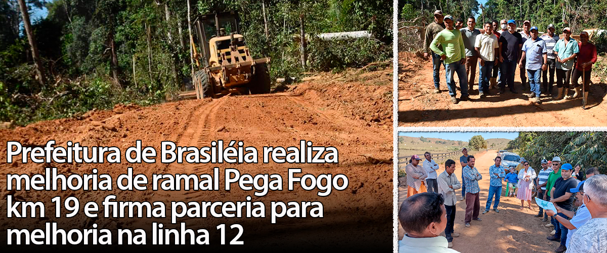BRASILEIA RAMAIS